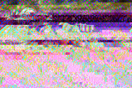 Damaged picture header